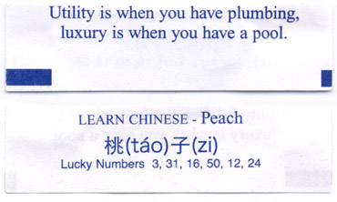 Utility is when you have plumbing, luxury is when you have a pool. Learn Chinese - Peach - tao zi. Lucky Numbers 3, 31, 16, 50, 12, 24